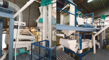 Wheat Processing